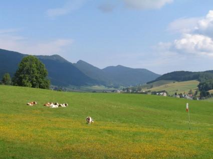 Plateau du Méaudret