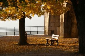 L'automne à la Bastille