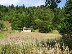 Cabane de Nave