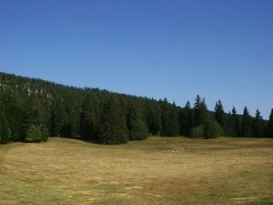 Prairie de Gève