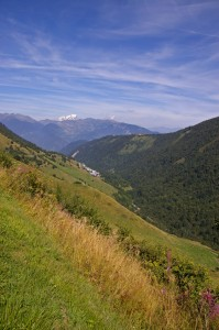 Cellier Dessus et le Mont-Blanc