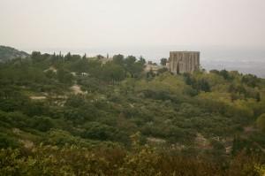 Garrigue et pinède environnante