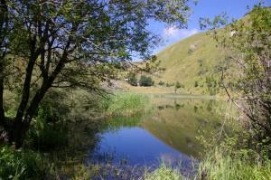 Lac depuis la berge