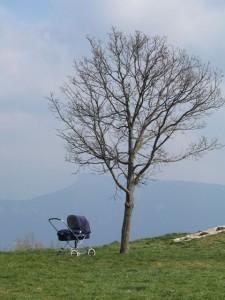 L'arbre, la Buffe et le landau