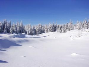 Prairie de Carette