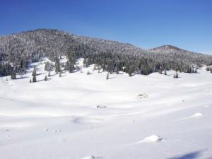 Prairie de Darbounouse