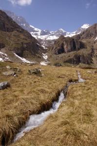 Ruisseau bondissant