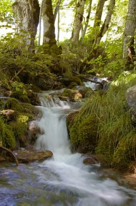 Ruisseau de la Settaz