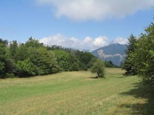 Champs du Mont Rachais