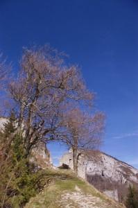 Château de Montbel