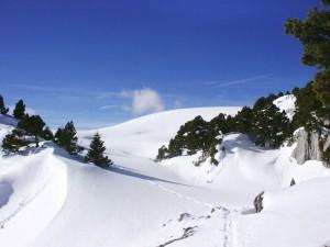 Au col de l'Alpe