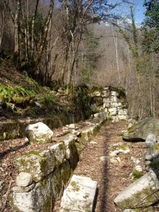 Canal d'amenée au moulin des Brieux