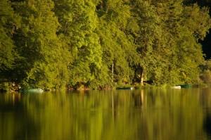 Derniers rayons sur la rive - Lac de Bonlieu