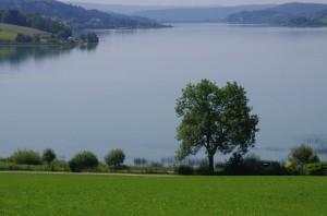 Lac de Saint-Point depuis Grange Tavernier