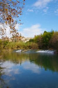 Le Lez à Castelnau