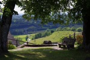 Banc ombragé - La Tour d'Auvergne