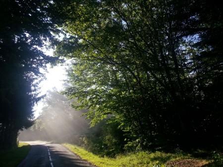 Route de Savennes à Messeix