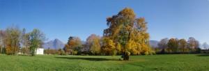 Prairie du parc château de Sassenage