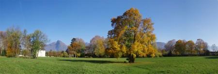 Panoramique - Prairie du parc château de Sassenage