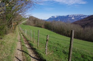 Chemin d'Izeaux à Parménie