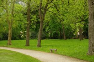 Parc du château - Banc