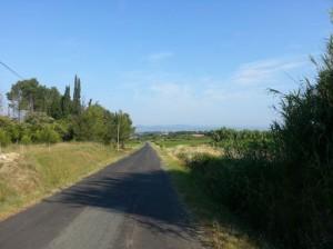Route de Lavérune à St-Georges