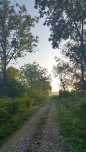 Belmont - Chemin